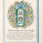 1974 Herbal Essence Advertisement